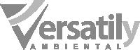 logo_site_cinza